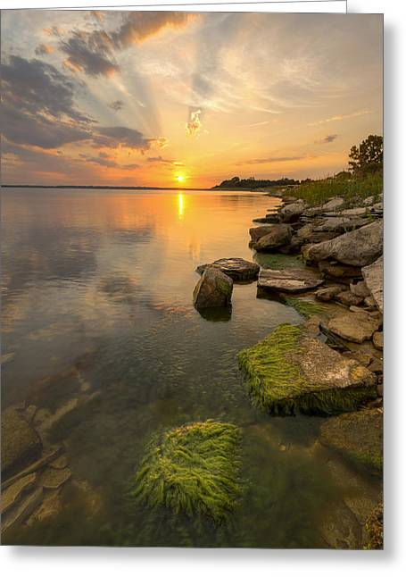 Enjoying Sunset Greeting Card