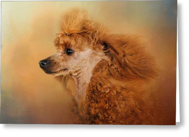 Enjoying The Breeze - Apricot Poodle Greeting Card