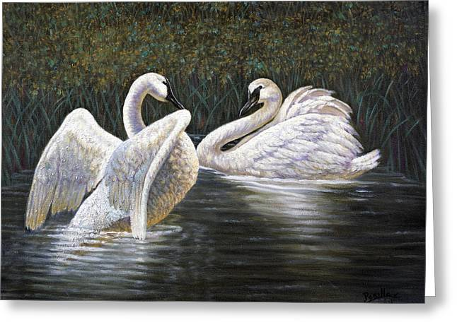 Enjoying The Trumpeter Swans Greeting Card by Gregory Perillo