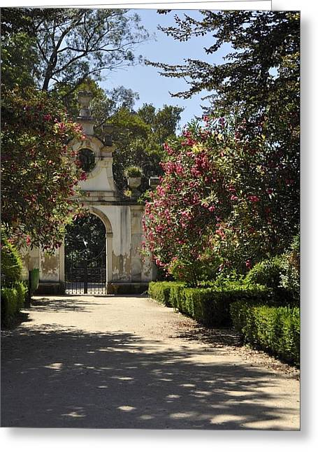 Entrance To A Secret Garden Greeting Card by Sandy Molinaro