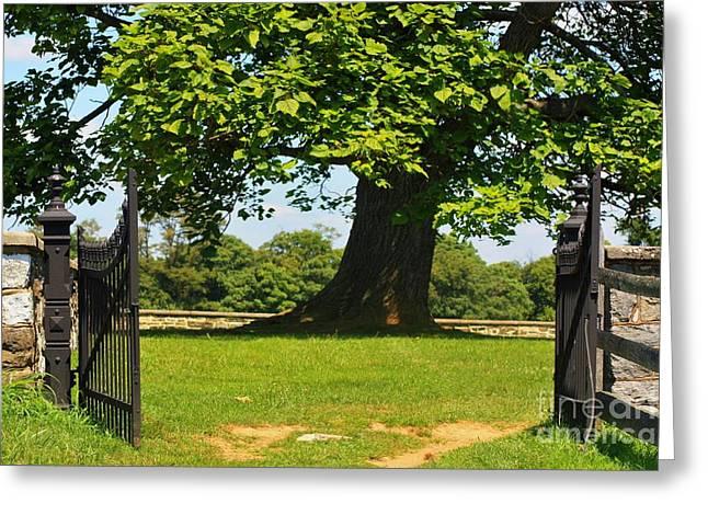 Entrance To Antietam's Mumma Cemetery Greeting Card by Patti Whitten