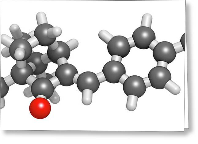 Enzacamene Sunscreen Molecule Greeting Card by Molekuul