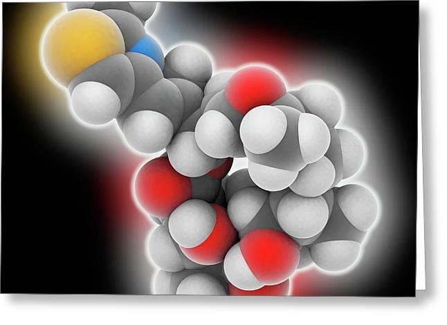 Epothilone B Drug Molecule Greeting Card by Laguna Design
