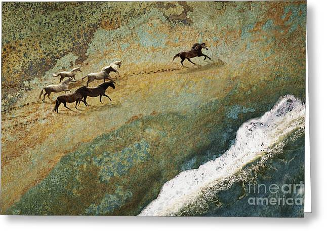 Equine Seascape Greeting Card