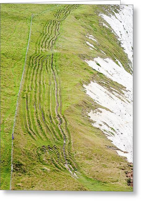Eroded Paths On The South West Coast Greeting Card by Ashley Cooper