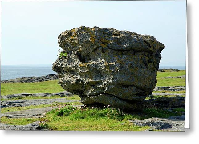 Erratic Boulder Greeting Card by Clouds Hill Imaging Ltd