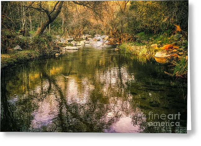 Escondido Creek In Evening Light Greeting Card