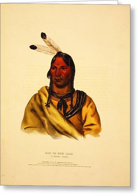 Esh Ta Hum Leah  A Sioux Chief Greeting Card by Celestial Images