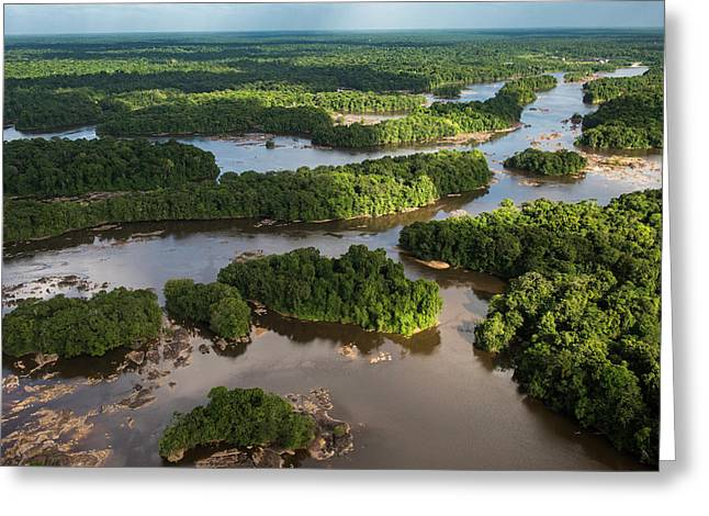 Essequibo River, Guyana Greeting Card by Pete Oxford
