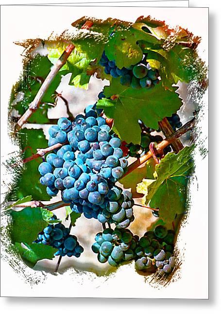 Estate Grown II Greeting Card by Ken Evans