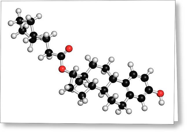 Estradiol Cypionate Estrogen Prohormone Greeting Card
