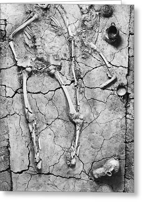 Estruscan Tomb Exhibit Greeting Card by Underwood Archives
