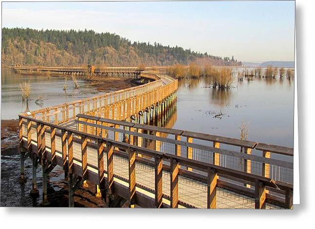 Greeting Card featuring the photograph Estuary Boardwalk Trail by I'ina Van Lawick