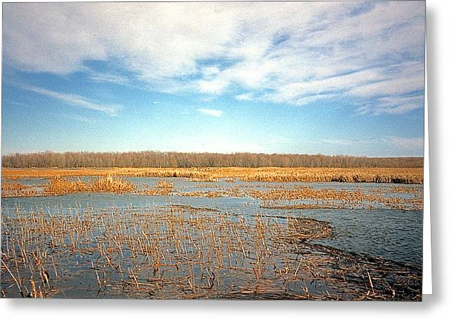 Greeting Card featuring the photograph Etang by Marc Philippe Joly