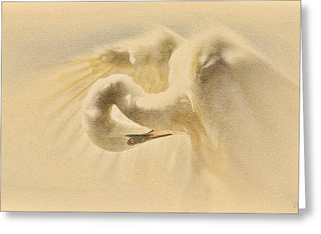 Ethereal Egret Greeting Card