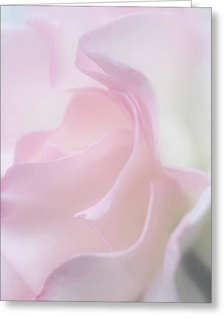 Ethereal Feeling Greeting Card by The Art Of Marilyn Ridoutt-Greene