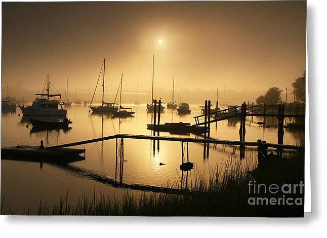 Ethereal Morning Greeting Card by Butch Lombardi
