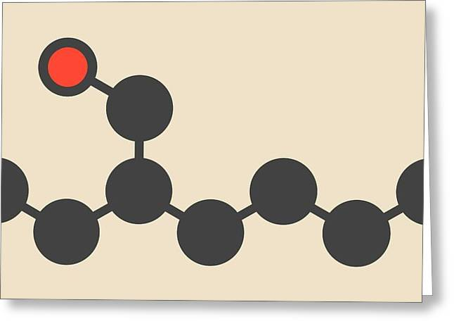 Ethylhexanol Molecule Greeting Card by Molekuul