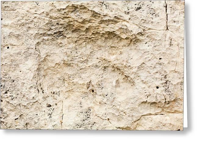 Eubrontes Dinosaur Footprint Greeting Card