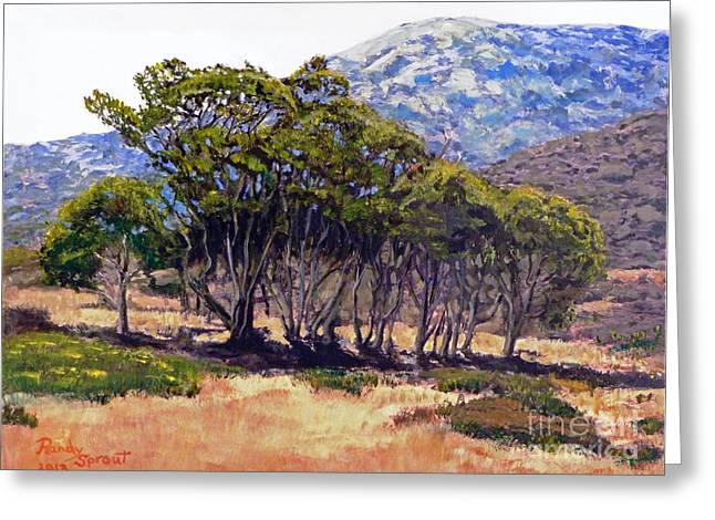 Eucalyptus Grove 2 Harbors Catalina Island Greeting Card
