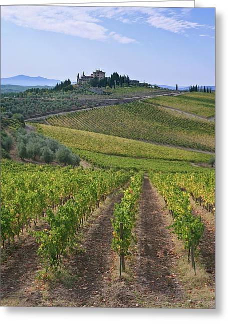 Europe, Italy, Tuscany, Chianti Greeting Card by Rob Tilley