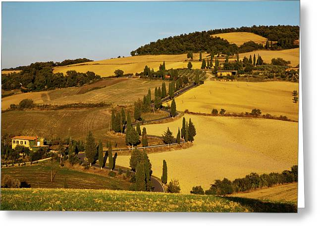 Europe, Italy, Tuscany, Zig Zag Road Greeting Card by Terry Eggers