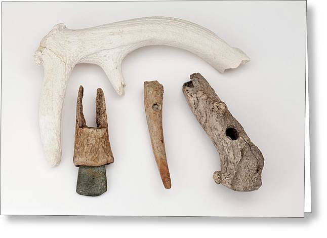European Stone Age Antler Tools Greeting Card
