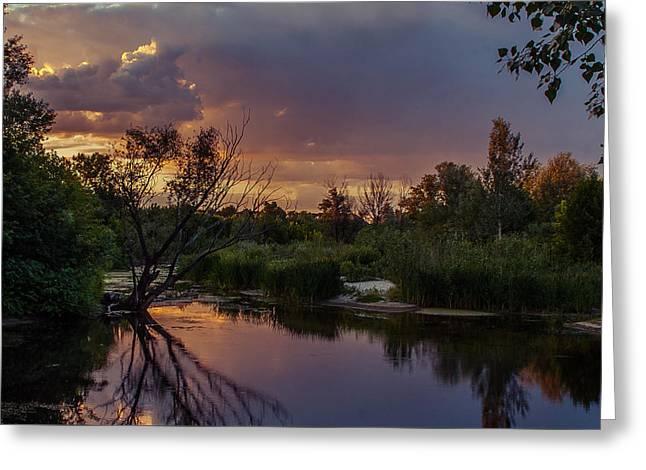 Greeting Card featuring the photograph Evening Colors by Dmytro Korol