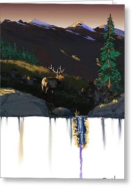Evening Elk Greeting Card