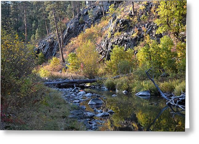 Evening Falls On Spring Creek Greeting Card