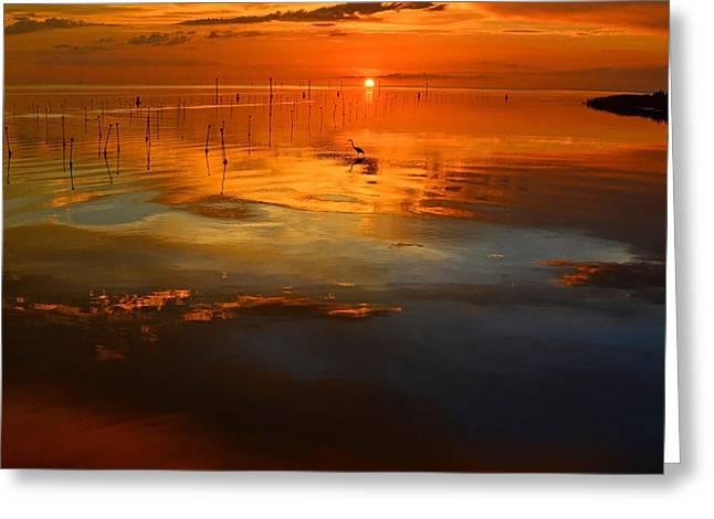 Evening Fishing Greeting Card by Stuart Harrison