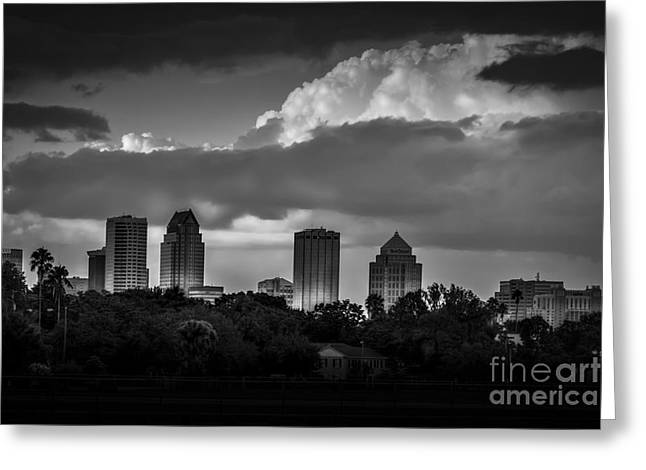 Evening Gray Greeting Card by Marvin Spates