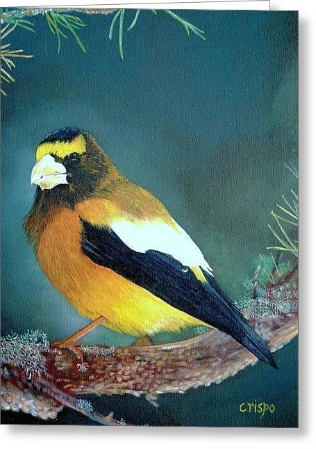 Evening Grosbeak Greeting Card
