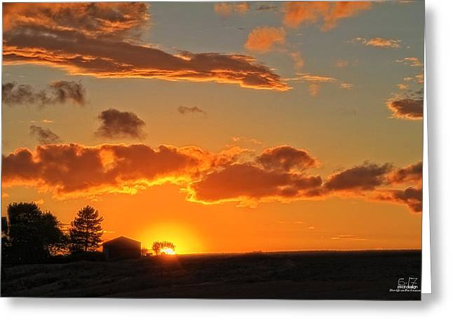 Evening Highlighted Greeting Card by Dan Quam