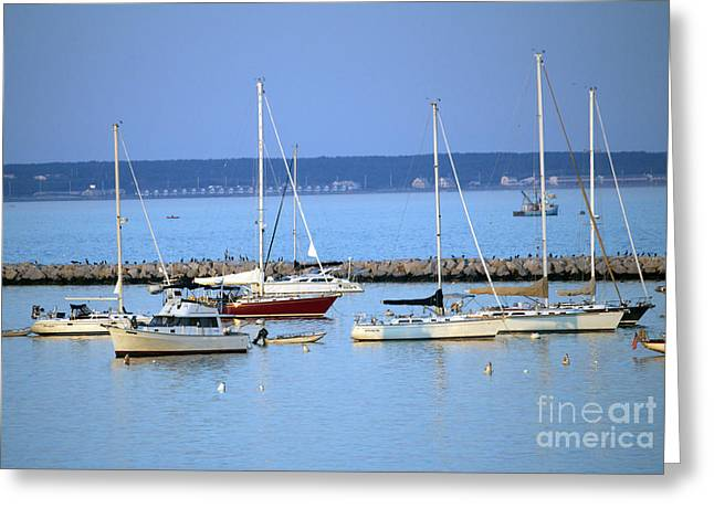 Evening I The Harbor Greeting Card