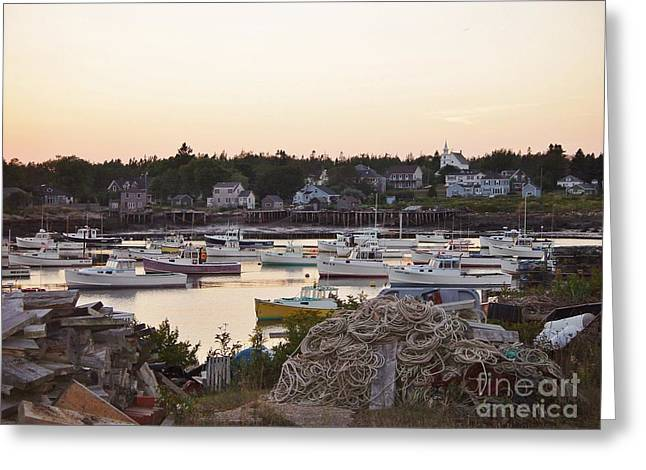 Evening Light Greeting Card by Christopher Mace