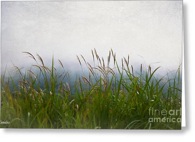 Evening Mist Greeting Card