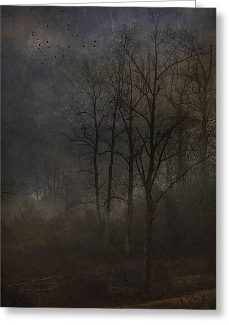 Evening Mist Greeting Card by Ron Jones