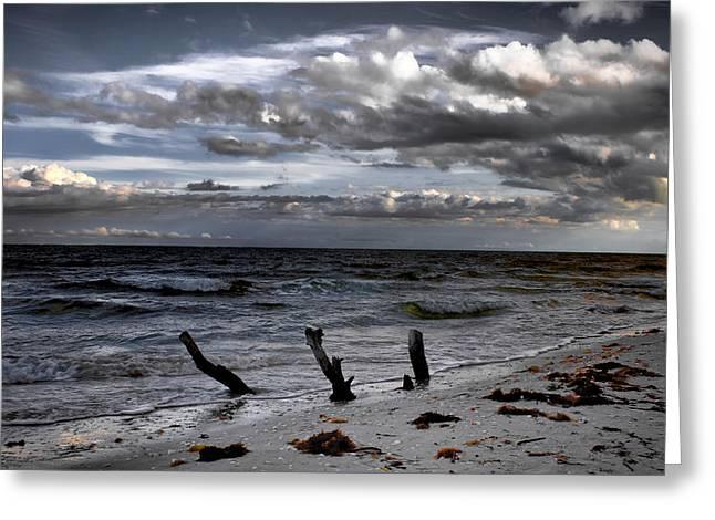 Evening On Lighthouse Beach Greeting Card by Ellen Heaverlo