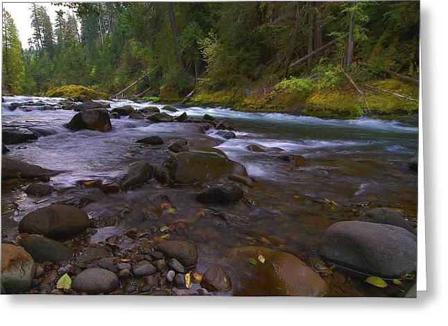 Evening On The Santiam River Greeting Card