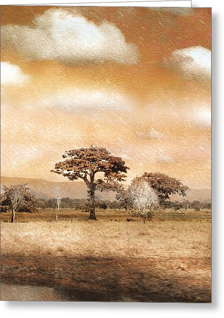 Evening Showers Greeting Card by Holly Kempe