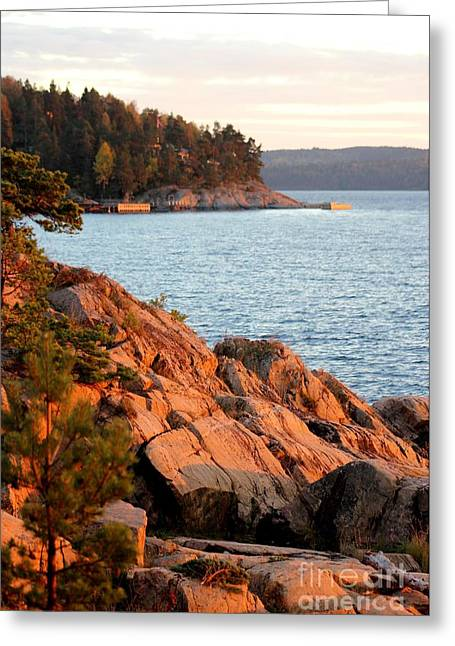 Evening Sun By The Waterfront Greeting Card