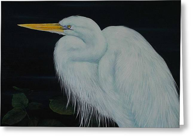 Everglades Angel Greeting Card