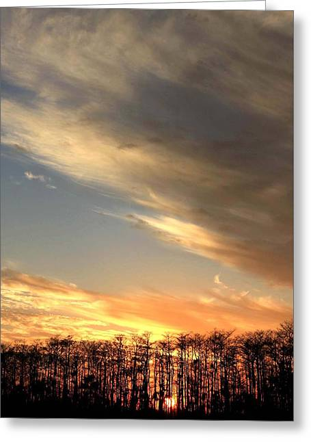 Everglades Clouds Greeting Card by AR Annahita