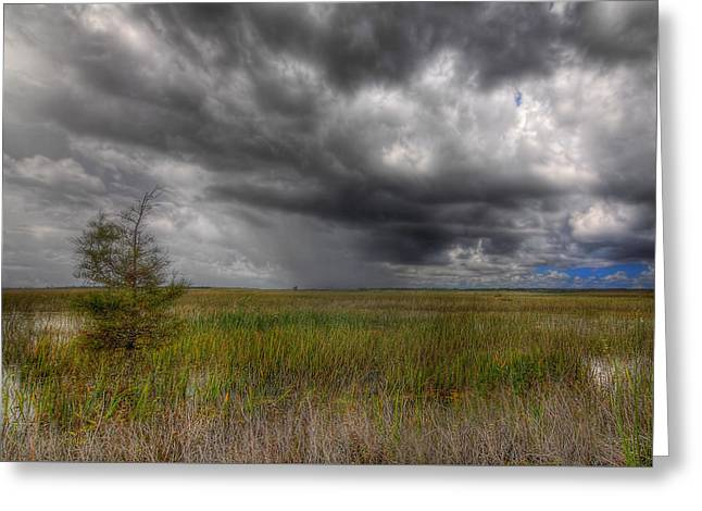 Everglades Storm Greeting Card