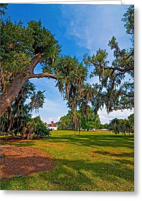 Evergreen Plantation II Greeting Card by Steve Harrington