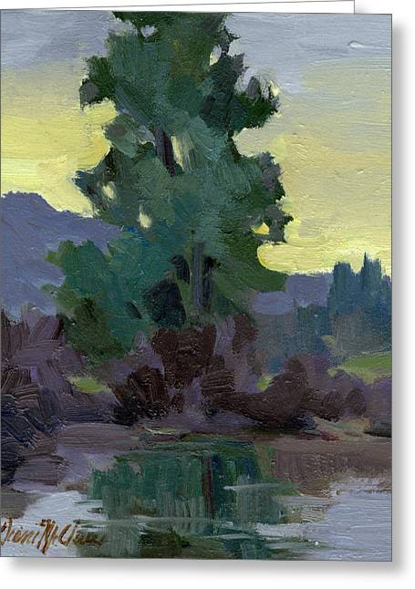 Douglas Fir Trees Greeting Cards - Evergreen Reflections Greeting Card by Diane McClary