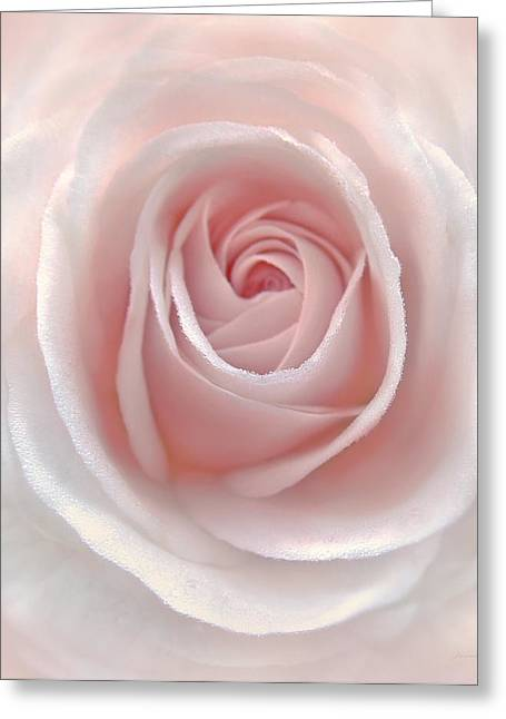 Everlasting Pink Rose Flower Greeting Card by Jennie Marie Schell