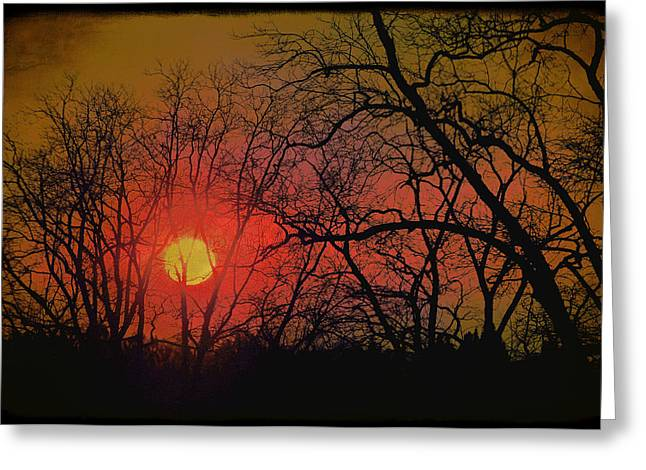Every Night I Can Hear The Promise Of A Gentle Awakening Greeting Card by Jan Amiss Photography