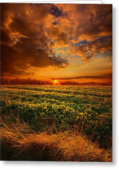 Every Step Of The Way Greeting Card by Phil Koch